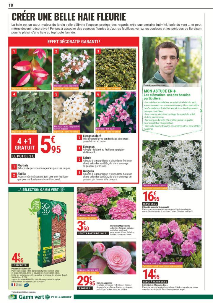 Gamm vert jardinerie rue des coquelicots 52300 for Catalogue de jardinerie